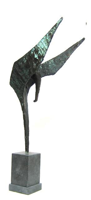 Hoofdfoto Olifantvogeltje