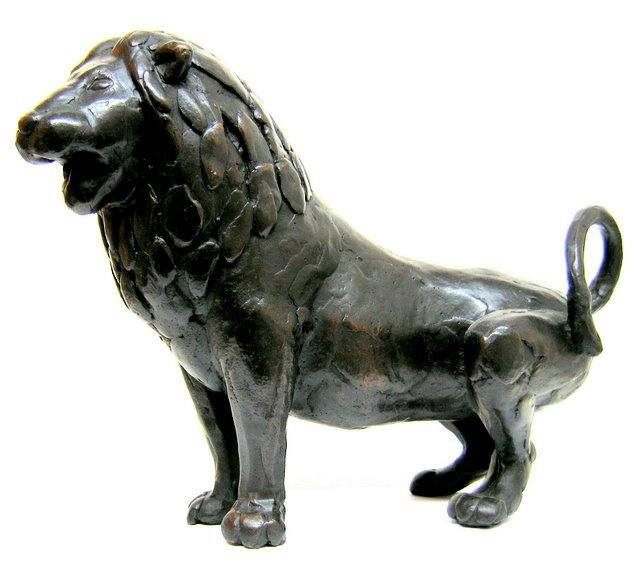 Hoofdfoto Leeuw
