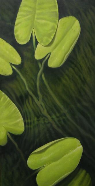 Hoofdfoto Waterlelie