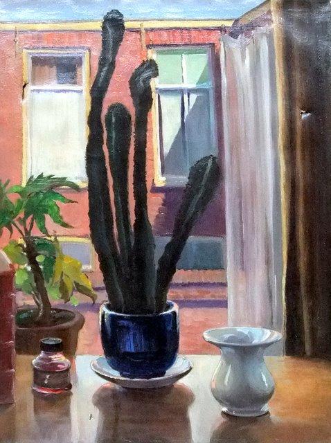 Hoofdfoto Cactus