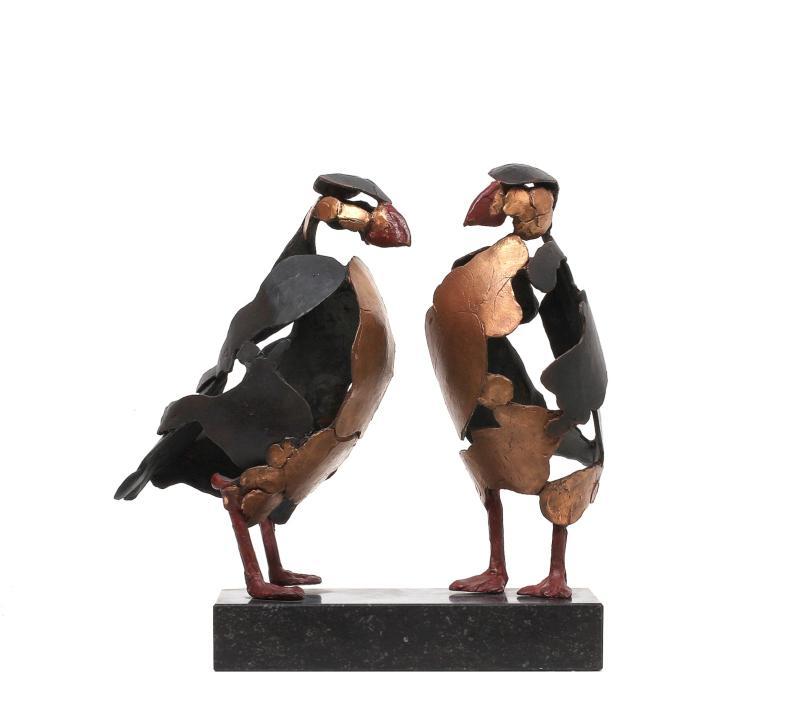 Hoofdfoto Twee Papegaaiduikers