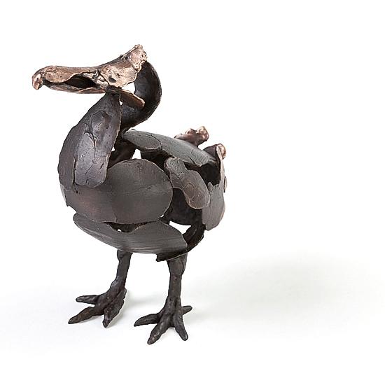 Hoofdfoto Dodo