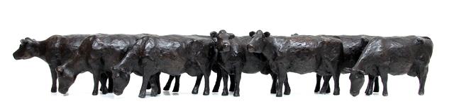 Hoofdfoto 8 koeien