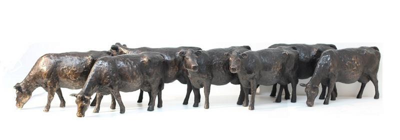Hoofdfoto 7 koeien