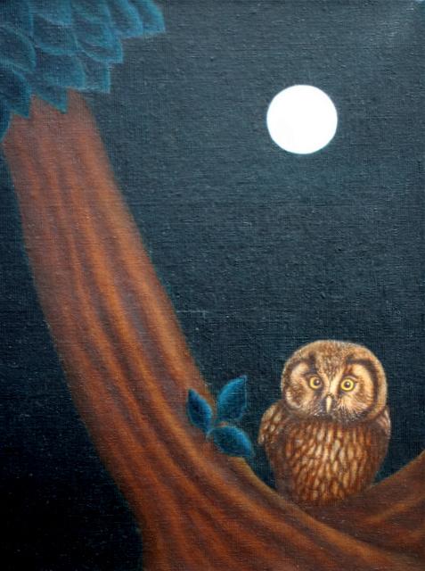 Hoofdfoto Wondering in the moonlight
