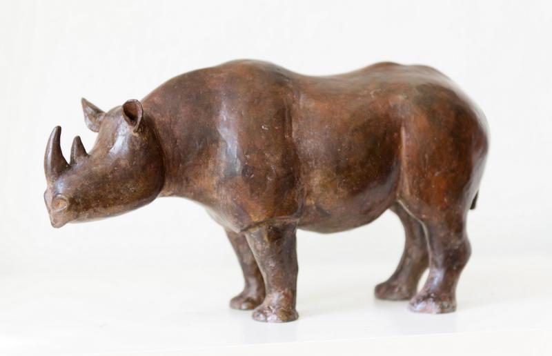 Hoofdfoto Rhino