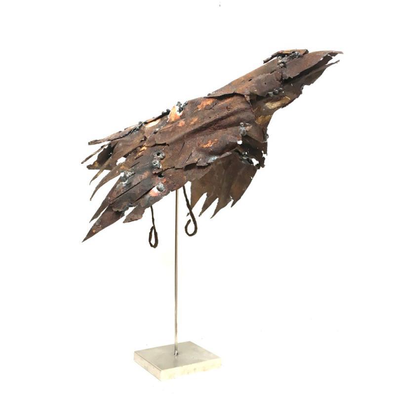 Hoofdfoto Crow