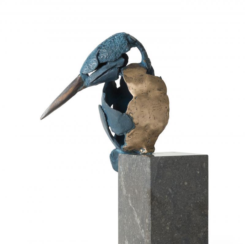 Hoofdfoto IJsvogel 5 (lage sokkel)