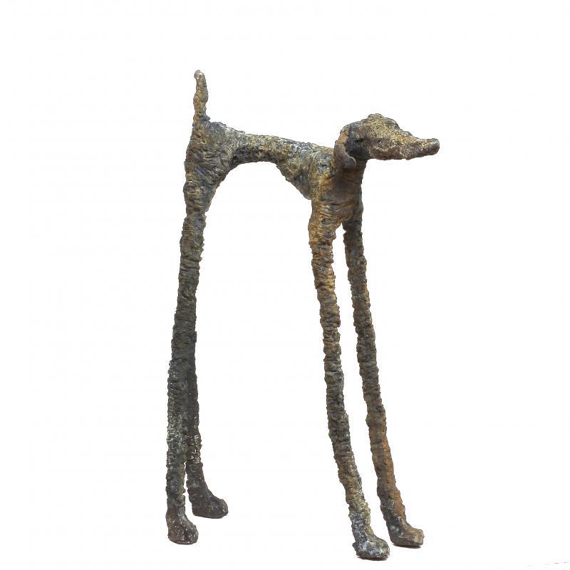 Hoofdfoto Dream Dog I