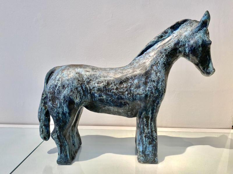 Hoofdfoto Paard
