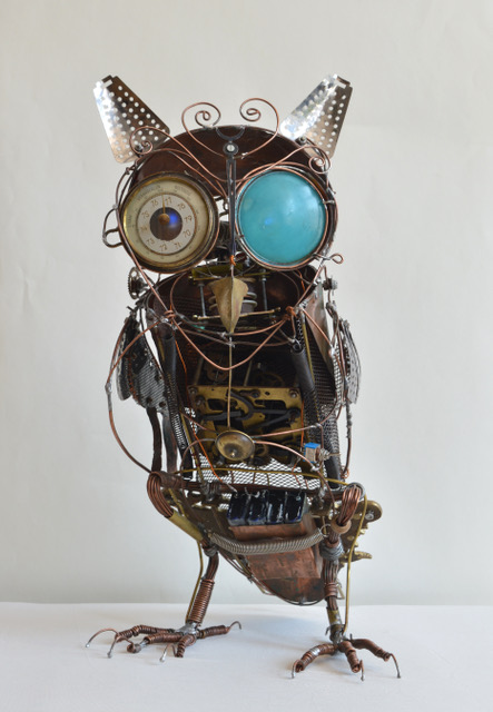 Hoofdfoto Owl