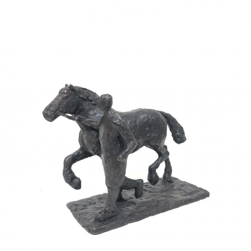 Hoofdfoto Dravend paard (139)
