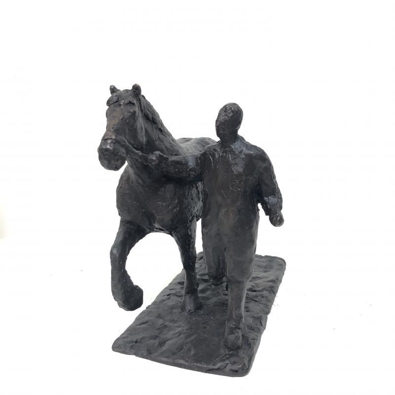 Foto 2 van Dravend paard (139)